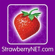 Strawberry Net