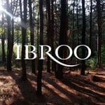 Ibroo